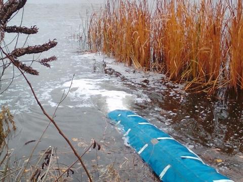В Каменском провели зарыбление водохранилища Днепродзержинск