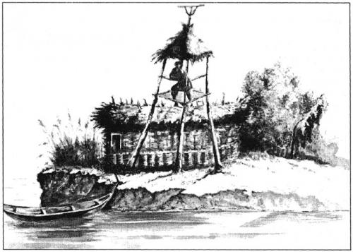 Пикет на острове