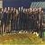 Каменчанки в составе сборной команды Украины U-16 отправились в Бельгию