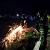 На трассе под г. Каменское произошло ночное ДТП